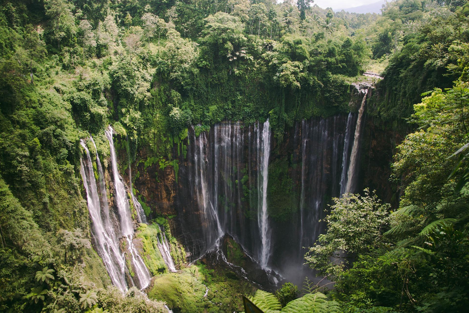 Bandeau Indonésie