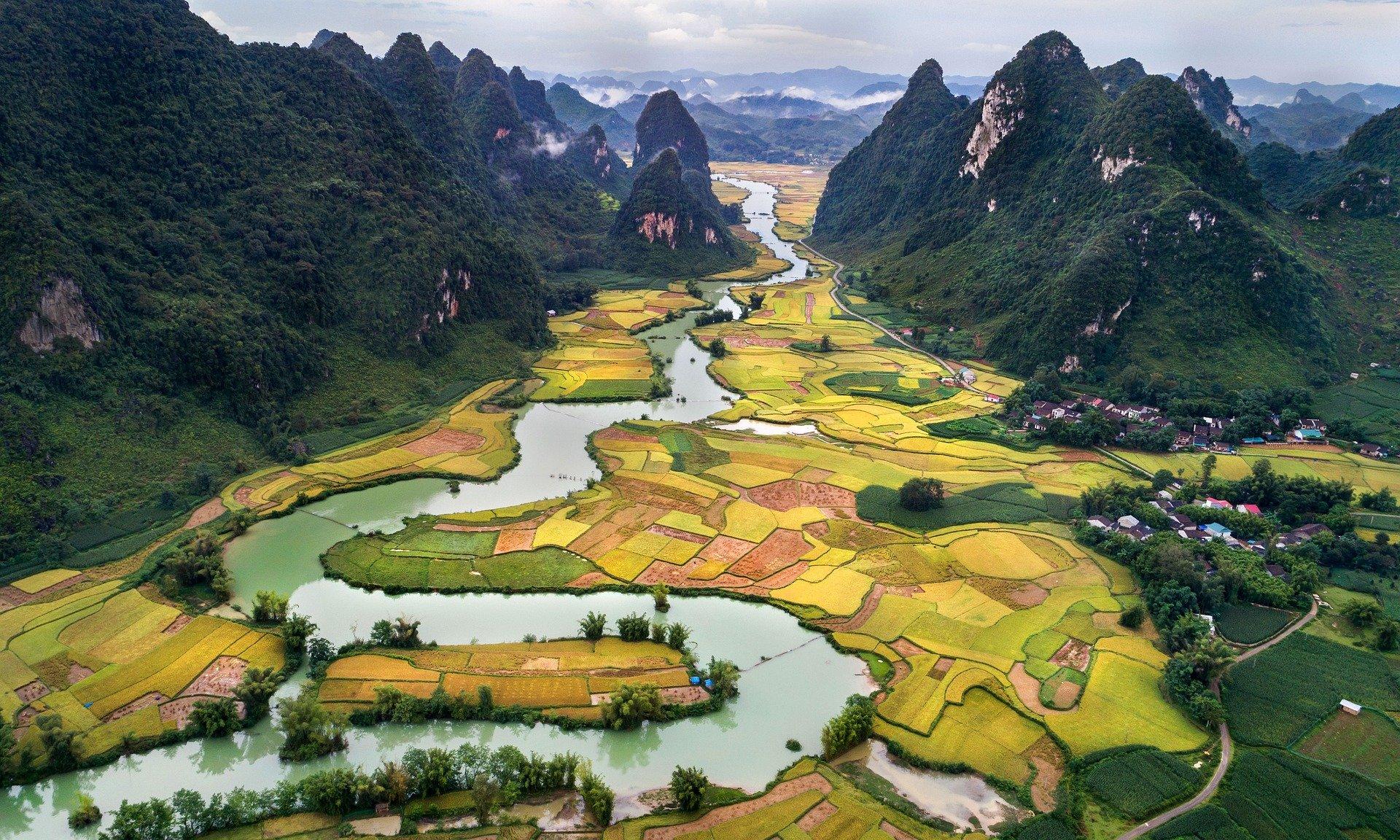 Bandeau Vietnam