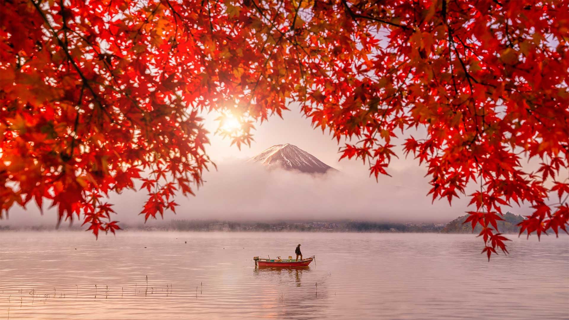Bandeau Japon