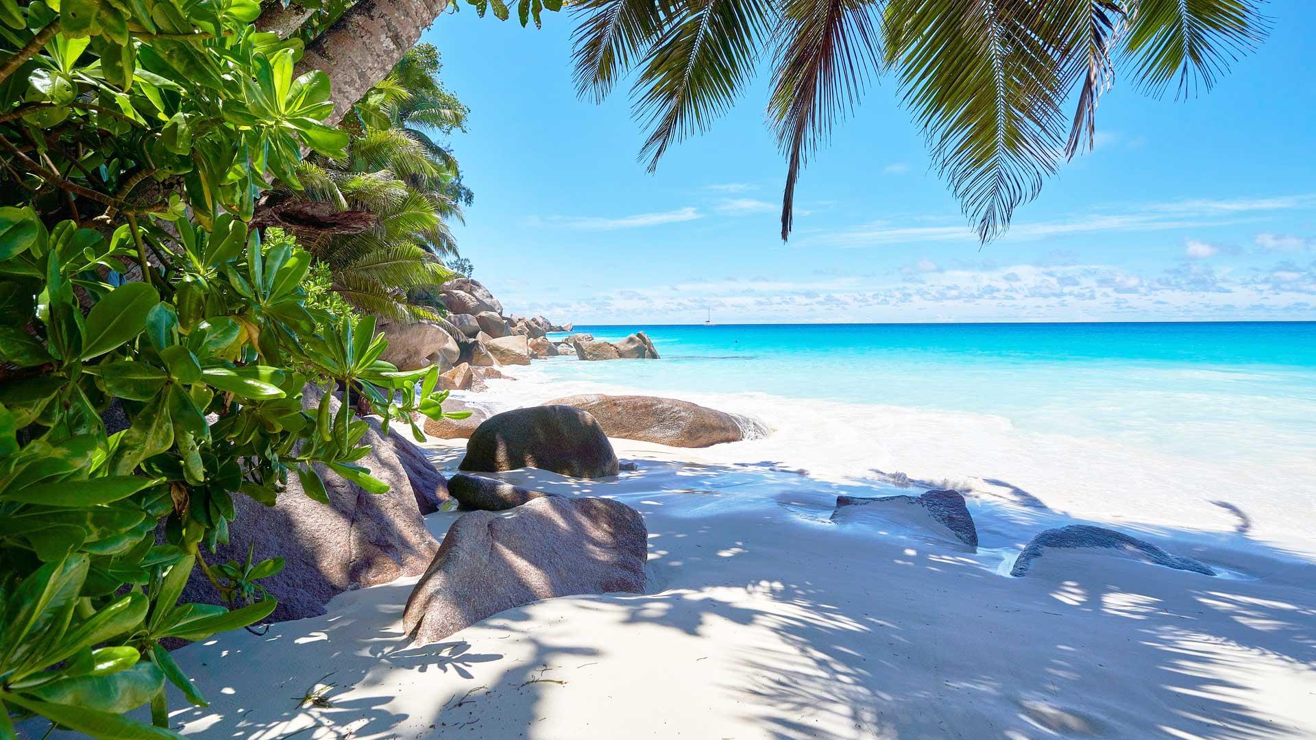 Bandeau Seychelles